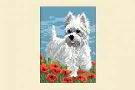 Kanwa 743 West highland white terrier